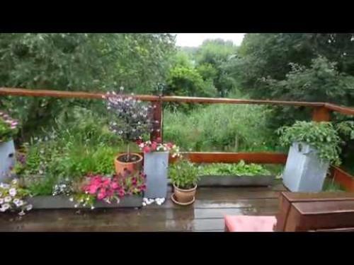 gartenspiel * Reh im Schilf * Schneckenplage & Bauerngarten mit eliZZZa
