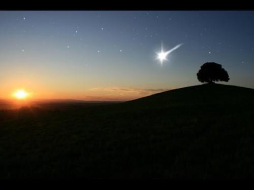 3. Dezember 2013 * Die Geschichte vom Sternenschäfchen von Uli Renz * nadelspiel Adventskalender